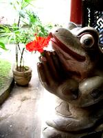 Restraunt_frog